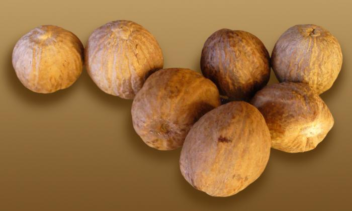 Herbs, spices, sugar, and salt: nutmeg, ground (Myristica fragrans), image of whole nutmeg seeds