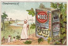 Natural condiments, Thomas Wood & Co, Boston, USA (Wood's). Photo Miami Uni.