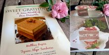 Guide to raw desserts. Delicious gourmet treats. Memories of New York, USA.